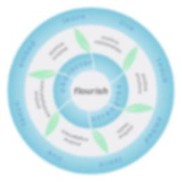 Positive Education Model - Geelong Gramm