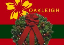 Oakleigh-Fairs-Christmas-Event-1-260x185