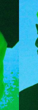 PICNIC STILL 3.jpg