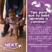 Consejos para los primeros pasos del bebé