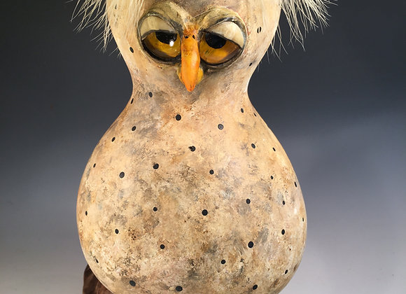 Hoot owl. This owl will fill any room with happiness.