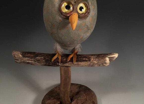 Perched owl egg