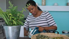Local Tea Company gets endorsement from Grace Bay Resort