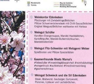 Mandelmeile am 23. Und 24. März. Besuchen Sie uns inmitten der rosa Bäume 🤩