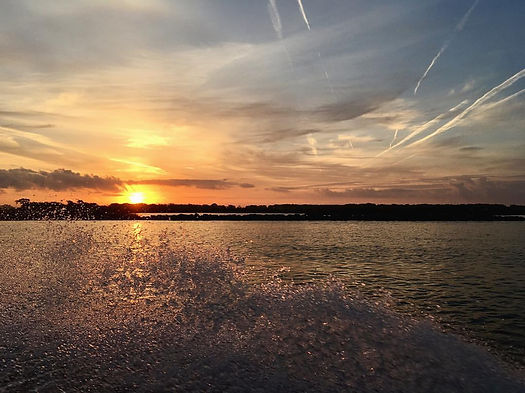 Passion home design photo taken at dusk while riding in a boat in rockefeller wildlif refuge