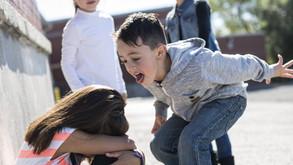Bullied or Bully?