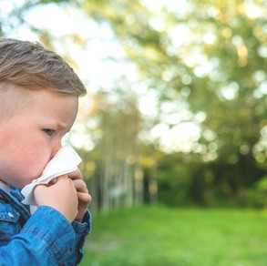 Hay fever: What to know & how to treat it