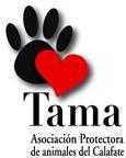Tama: Carta Abierta A La Población