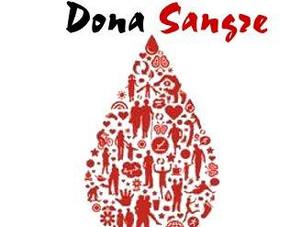 14 de junio: Día Mundial del Donador Voluntario