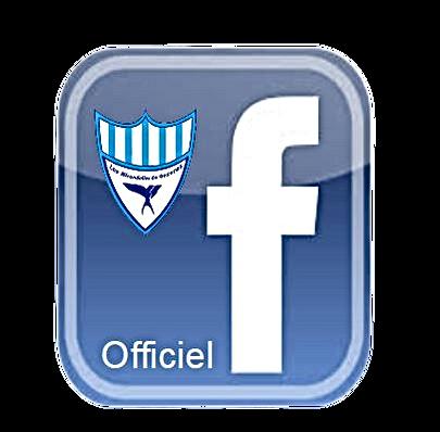 Facebookleshirondelles.png