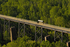 Oak Bridge Timbers