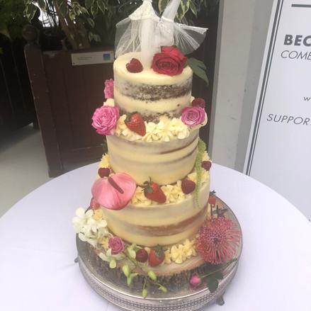 cake5.jpg