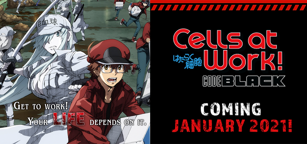Cells At Work! Code Black Trailer. Anime series coming in January 202.