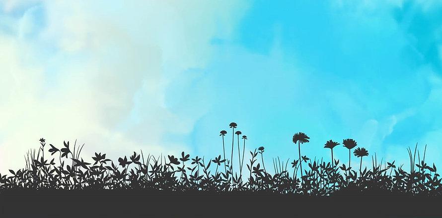 Tidy-Wild-Home-Background-Header.jpg