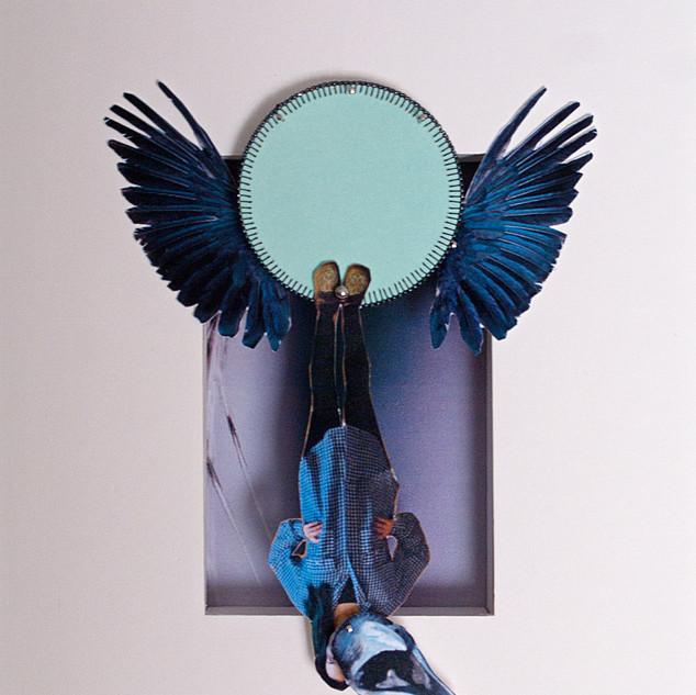 Shapeshifter 1 (Raven)
