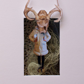 Shapeshifter 3 (deer)