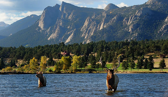 Estes Park Marathon | Colorado Mountain Half Series