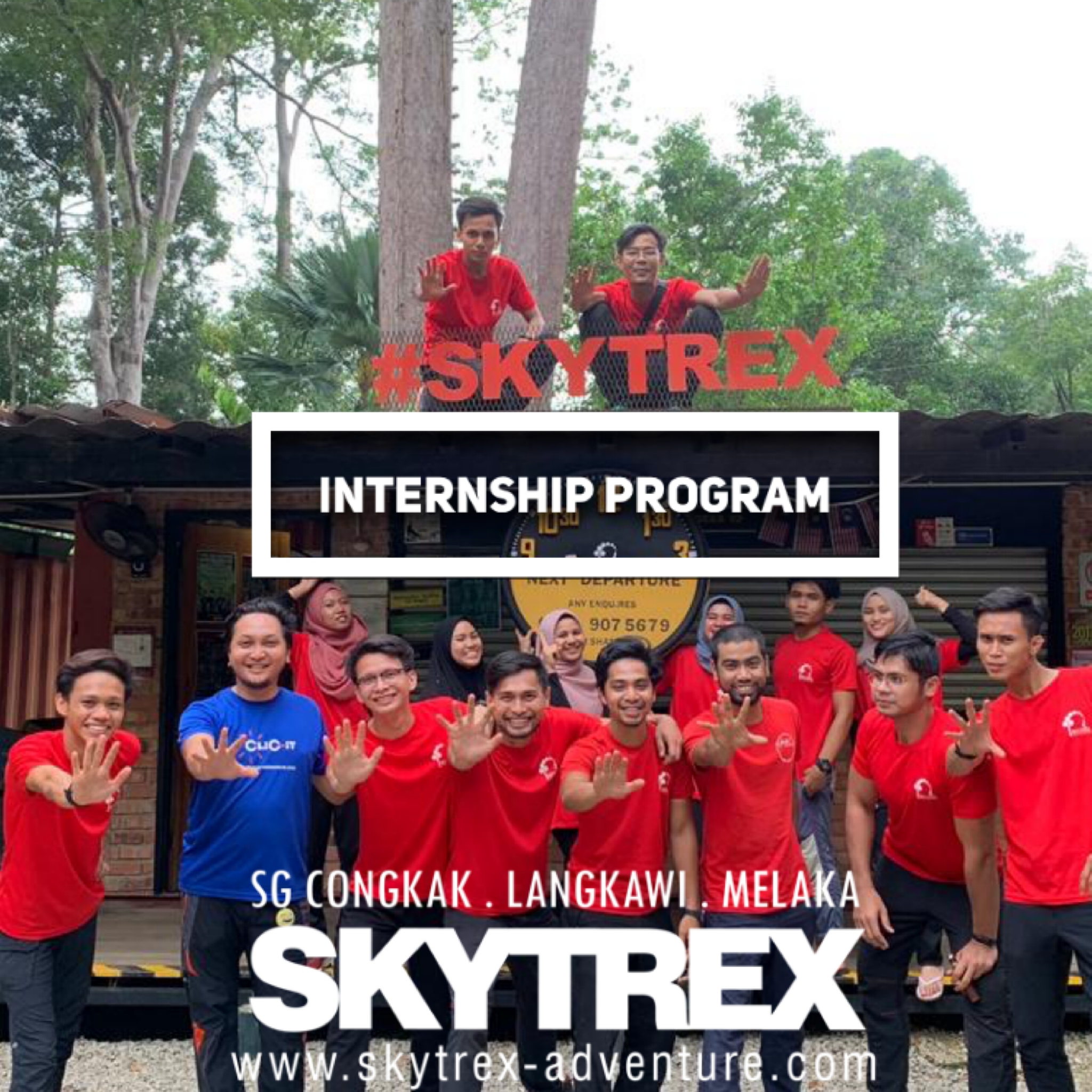 Internship at Skytrex