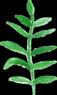 watercolor-leaf-2-2.png