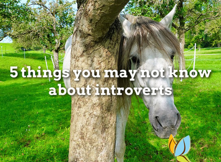 5 Things You May Not Know About Introverts