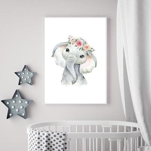 Elephant- 1 pic