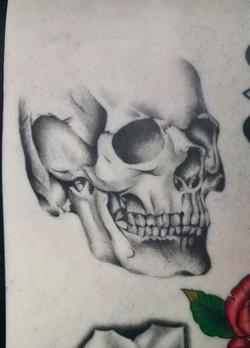 First Skull