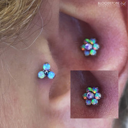 Conch and Tragus