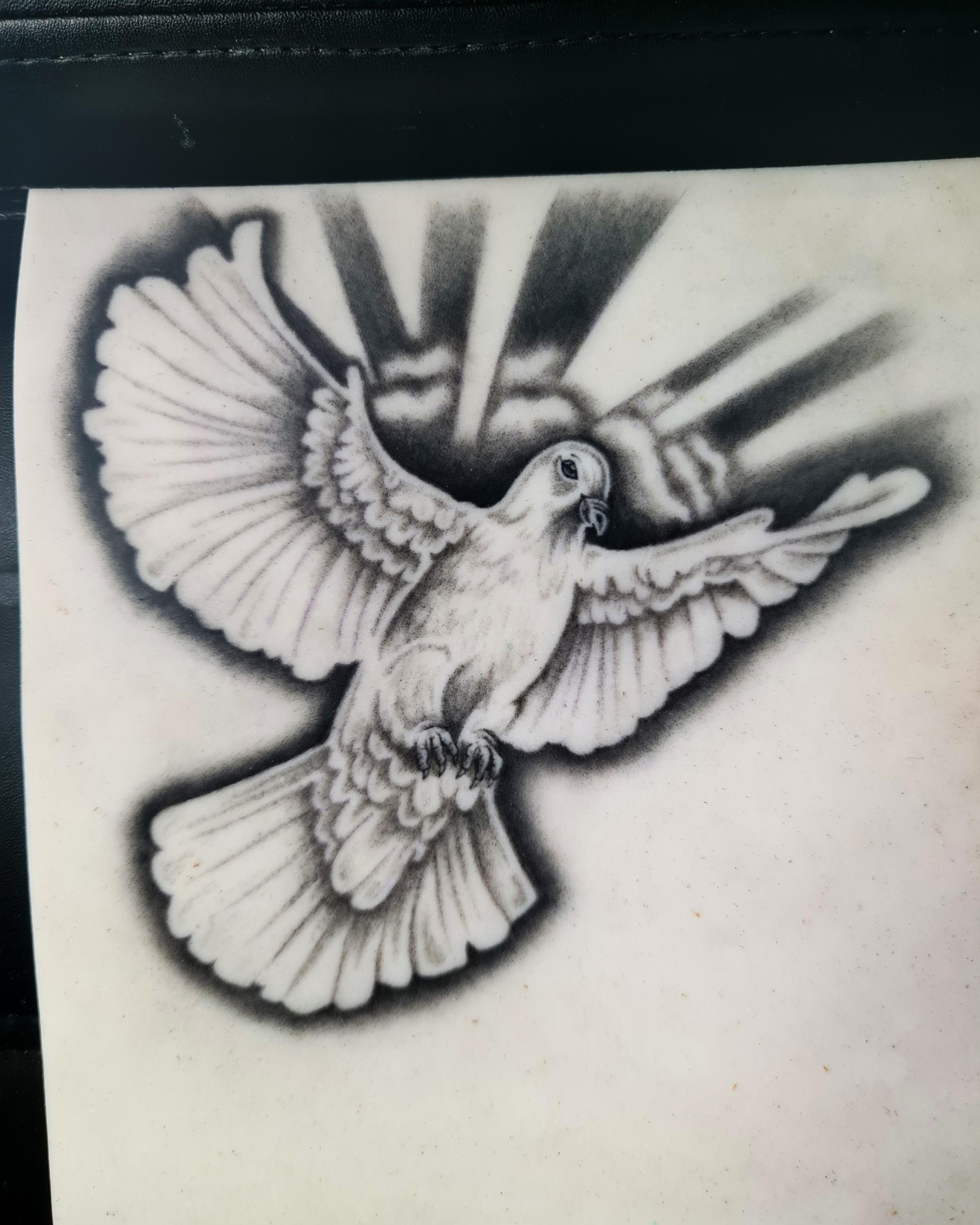 Realistic Dove