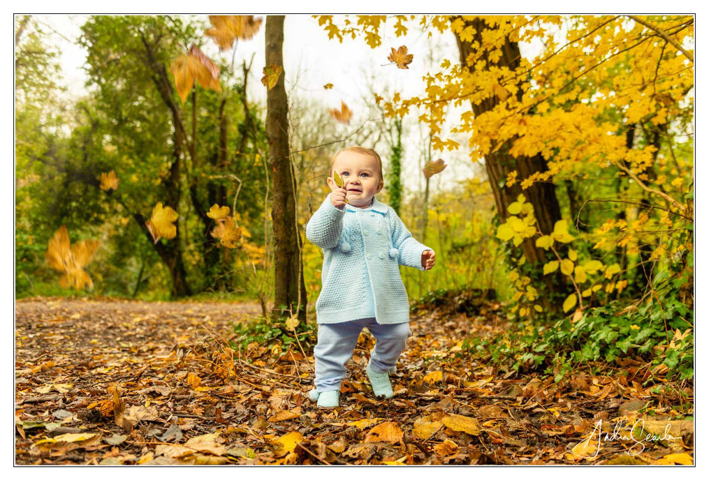 Child in the Woods