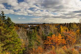 A View From The Bluffs