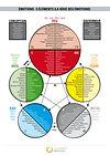 Emotions : roue des 5 éléments