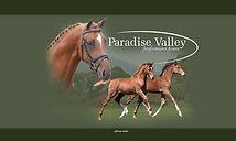 Paradise Valley banner.jpg