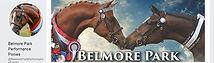 Belmore Park banner.jpg