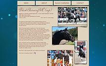 Charming ponies banner.jpg