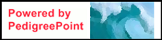 PedPoint Header.png
