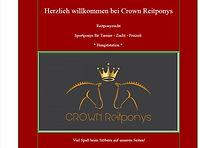 Crown reitponies banner.jpg