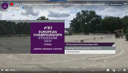 FEI Euro Part 1.jpg
