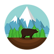 Salesin.io based in Colorado, bear badge