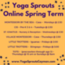 Yoga Sprouts Online Spring Term.png