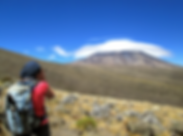 Kilimanjaro seen from a distance.png