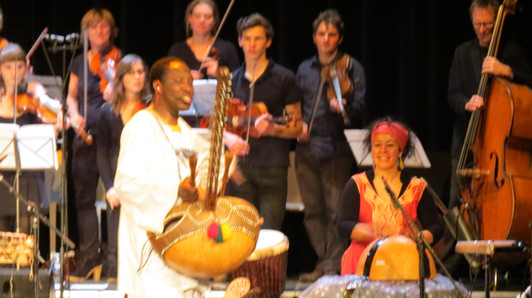 Kora Strings Project CC Namur -Belgium