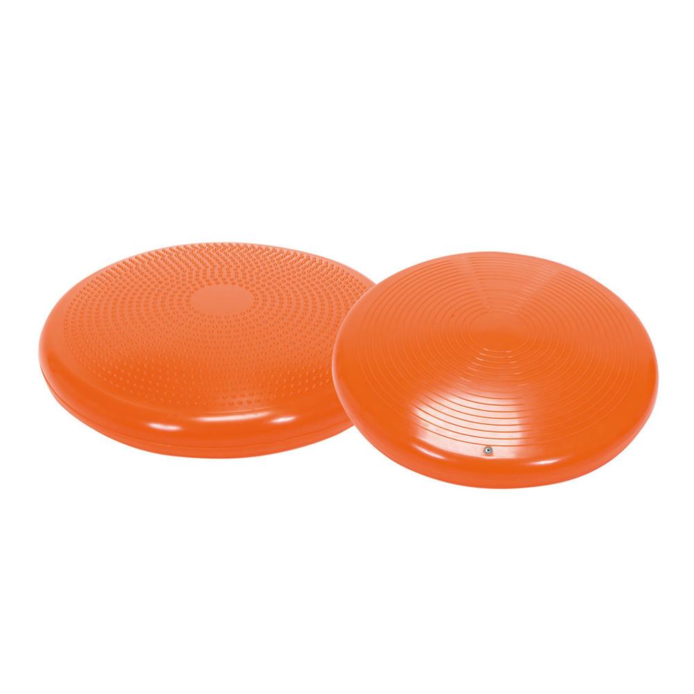 dual balance discs