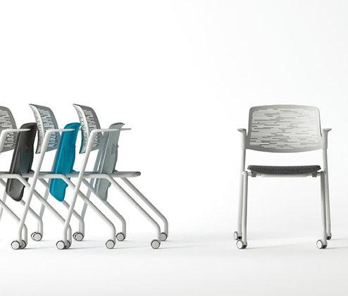 FINI meeting chair