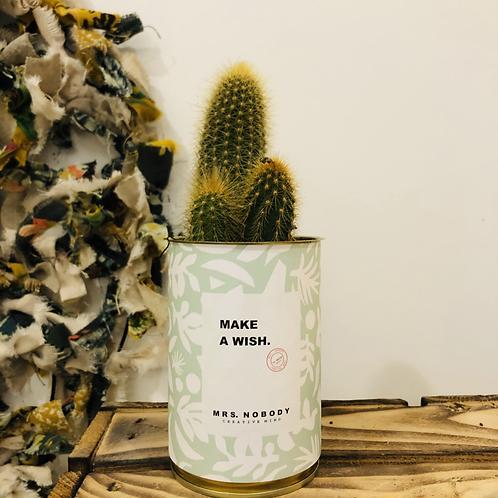 "Cactus ""MAKE A WISH"""