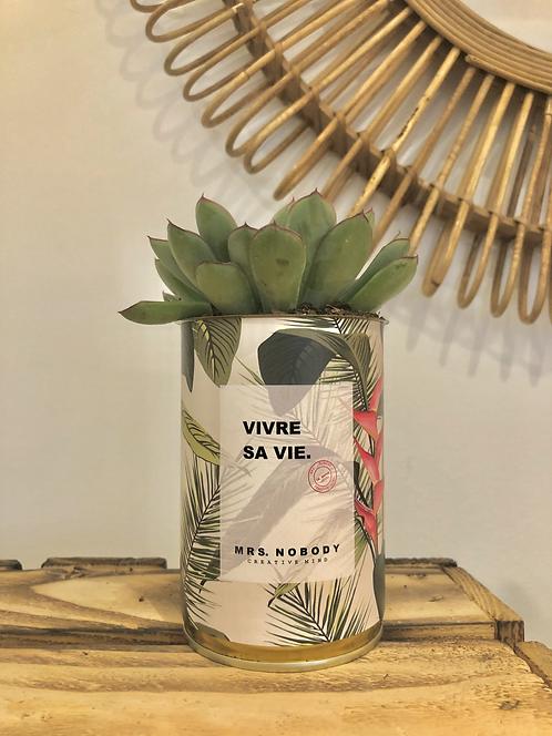 "Cactus ""VIVRE SA VIE"""