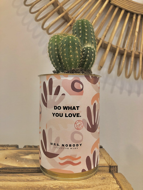"""Cactus """"DO WHAT YOU LOVE"""""""