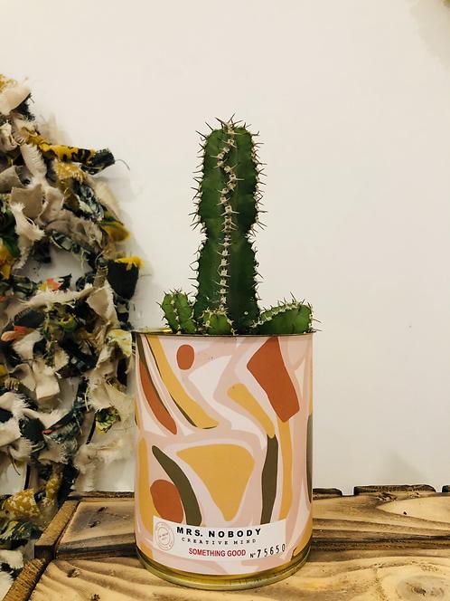"Cactus ""SOMETHING GOOD"""