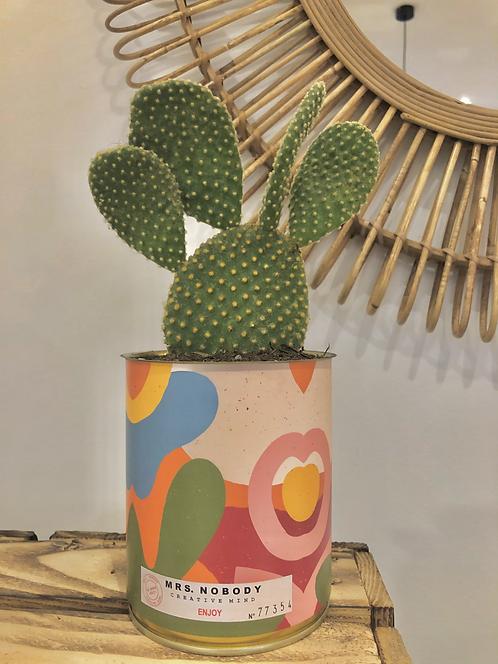 """Cactus """"ENJOY"""""""