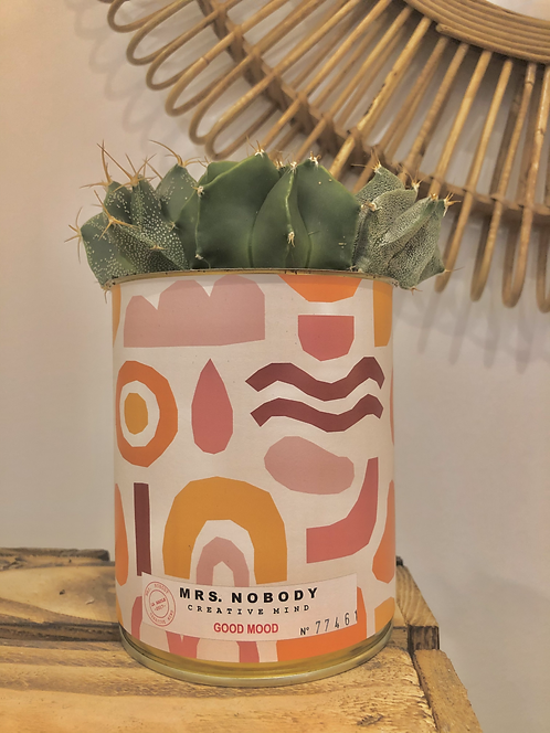 "Cactus ""GOOD MOOD"""