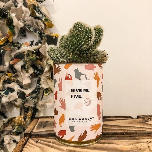 "Cactus ""GIVE ME FIVE"""